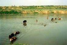 খোয়াই নদী